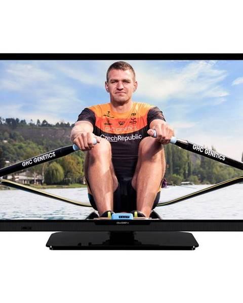 GoGEN Televízor Gogen TVH 24P452T čierna