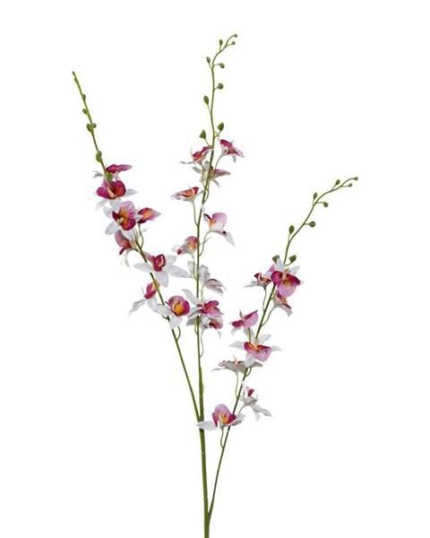 Möbelix Orchidea 3018125mm-81