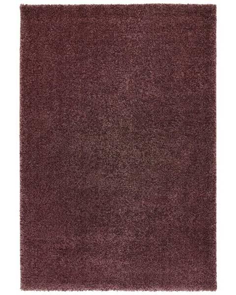 Möbelix Tkaný koberec Rubin 1, 80/150cm, Fialová