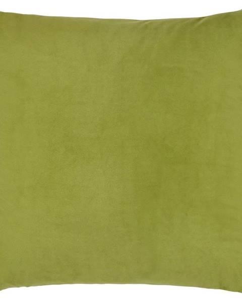 Möbelix Dekoračný Vankúš Junglelife, 60/60 Cm,zelená