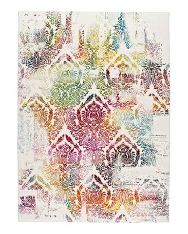 Koberec Universal Kenti, 200×290 cm