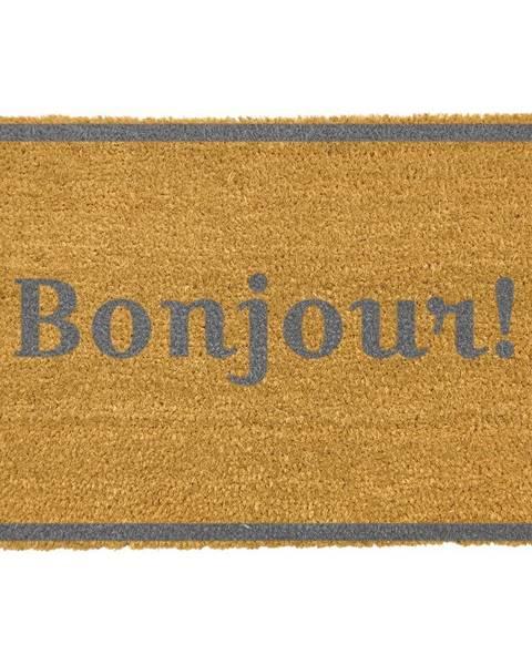 Artsy Doormats Rohožka z prírodného kokosového vlákna Artsy Doormats Bonjour Grey, 40 x 60 cm