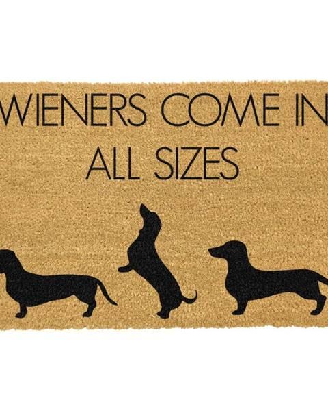 Artsy Doormats Rohožka z prírodného kokosového vlákna Artsy Doormats Weiners Come In All Sizes, 40 x 60 cm