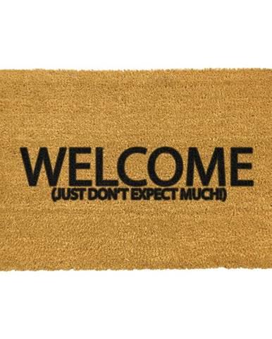 Rohožka z prírodného kokosového vlákna Artsy Doormats Welcome Don&