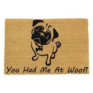 Rohožka z prírodného kokosového vlákna Artsy Doormats You Had Me At Woof Pug, 40 x 60 cm