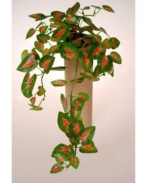 Jerry Fabrics Umelé Mini caladium, 40 cm