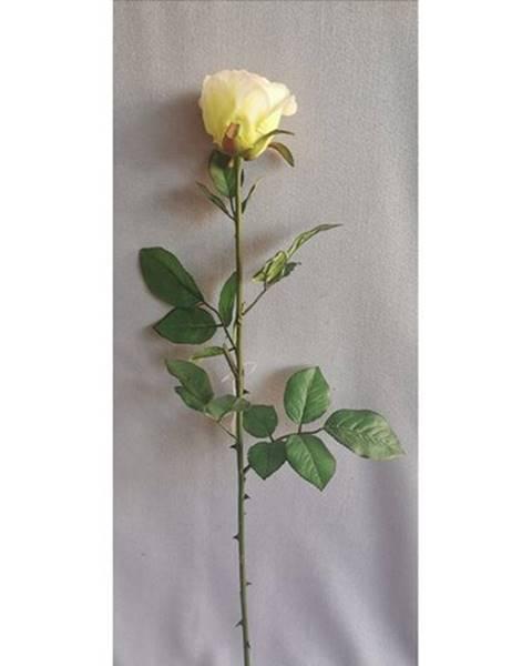 Florina Umela ruža biela, 69 cm