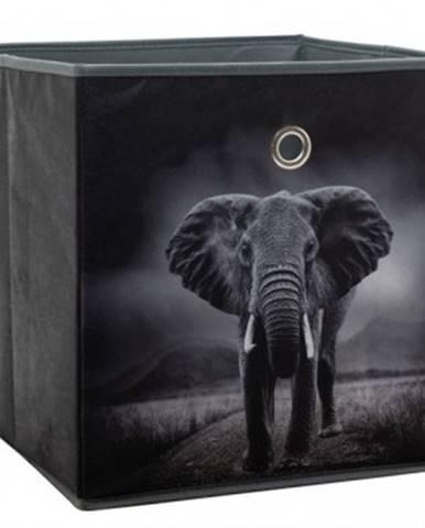 Úložný box Alfa, motív slon v divočine%