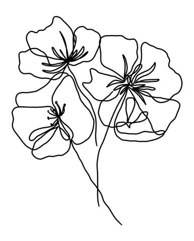 Plagát na kvalitnom fotopapieri Veronika Boulová Kvety, A3