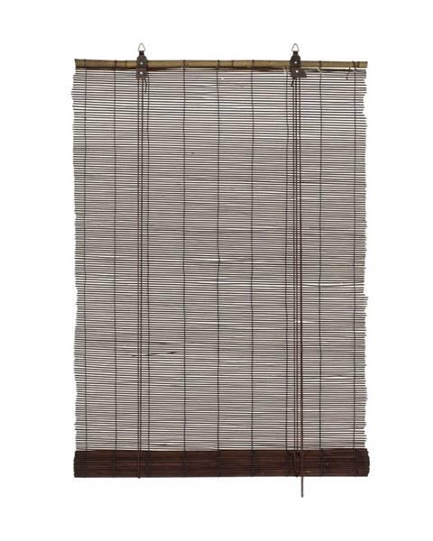 Gardinia Gardinia Roleta bambusová čokoládová, 120 x 160 cm