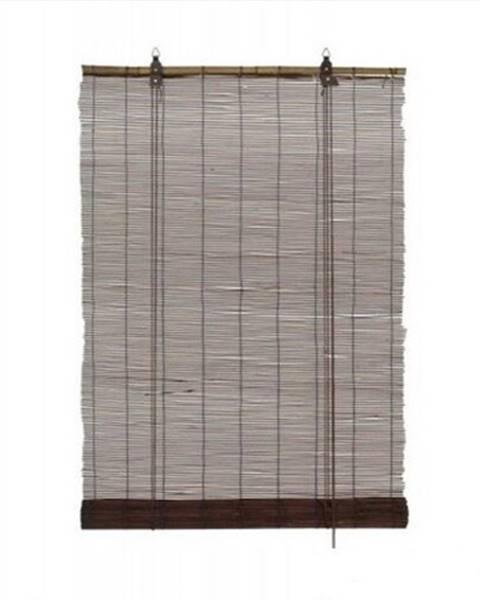 Gardinia Gardinia Roleta bambusová teak, 80 x 160 cm