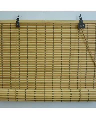 Gardinia Roleta bambusová JAVA prír./čokoláda, 80 x 160 cm