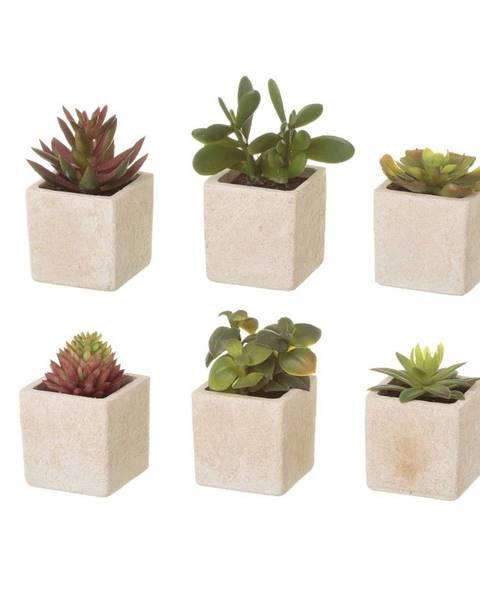 Unimasa Sada 6 umelých dekorácii v tvare exotických kaktusov v kvetináči Unimasa