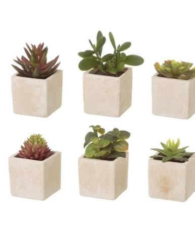 Sada 6 umelých dekorácii v tvare exotických kaktusov v kvetináči Unimasa