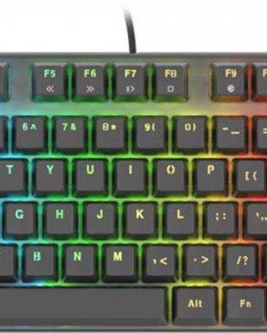 Herná klávesnica Genesis Thor 300 TKL RGB