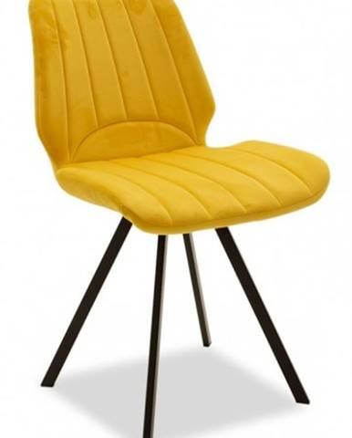 Jedálenská stolička Stacy čierna, žltá
