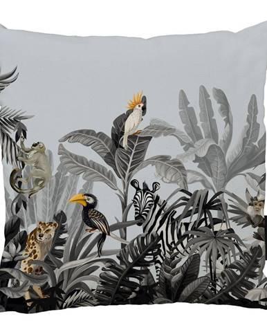 Modro-sivý bavlnený dekoratívny vankúš Butter Kings Exotic Animals, 50 x 50 cm