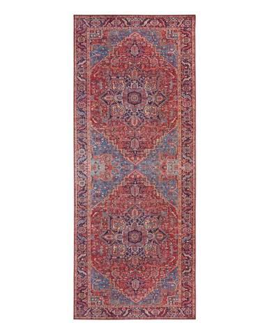 Červený koberec Nouristan Amata, 80 x 200 cm