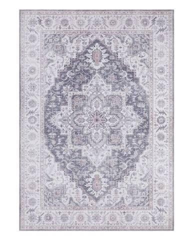 Sivo-ružový koberec Nouristan Anthea, 160 x 230 cm