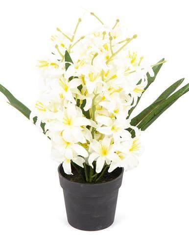 Umelá kvetina Ľalia drobnokvetá v kvetináči biela, 30 cm