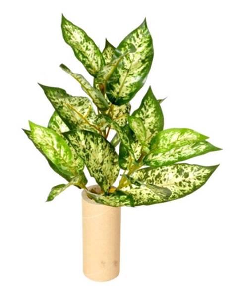 Gardinia Umelá Mramornatka zelená, 45 cm