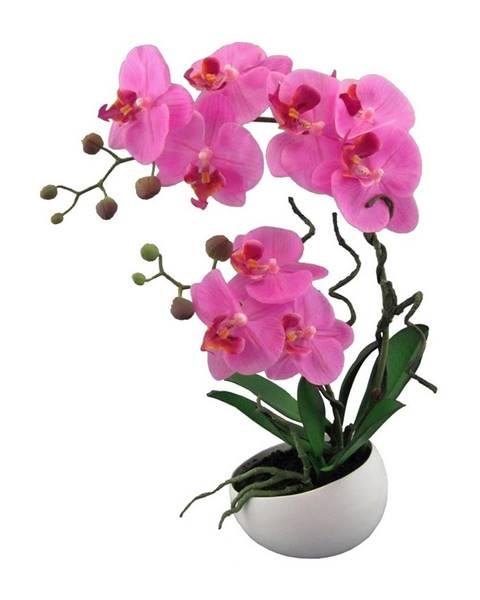 Gardinia Umelá Orchidea v kvetináči ružová, 42 cm 115812-80