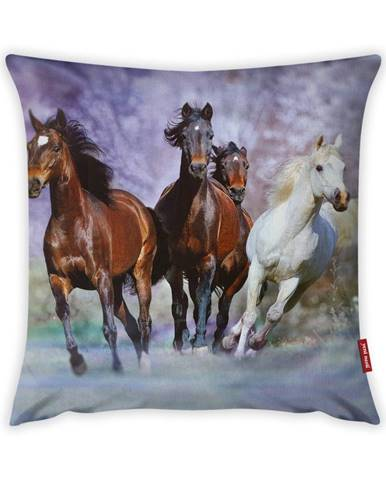 Obliečka na vankúš Vitaus Horses, 43×43 cm