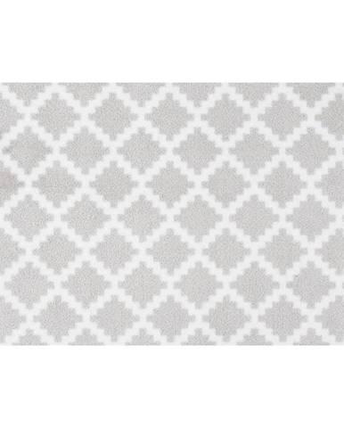 Svetlosivá rohožka Zala Living Elegance, 50×70 cm
