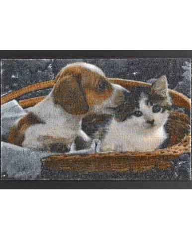 Rohožka Hanse Home Animals Dog and Cat, 40×60 cm
