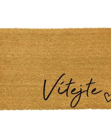Rohožka z prírodného kokosového vlákna Artsy Doormats Vítejte, 40 x 60 cm