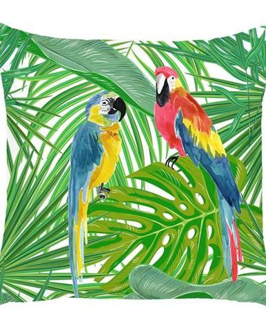 Obliečka na vankúš Mike&Co.NEWYORK Jungle Parrot, 43 × 43 cm