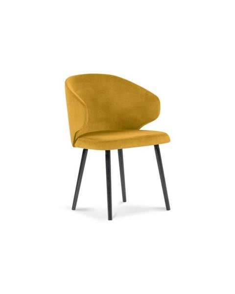 Windsor & Co Sofas Žltá jedálenská stolička so zamatovým poťahom Windsor & Co Sofas Nemesis