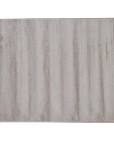 Koberec sivá 80x125 FRODO