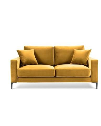 Žltá zamatová pohovka Kooko Home Harmony, 158 cm