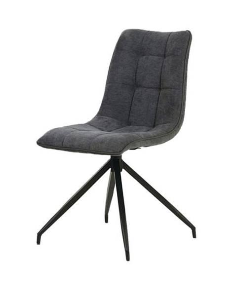 Sconto Jedálenská stolička CECILIA sivá
