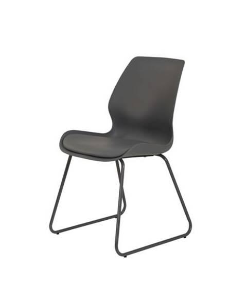 Sconto Jedálenská stolička LENA S sivá